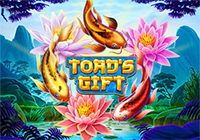 Toad`s Gift
